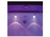 Cromoterapia Violeta: alegria, luminosidade, aceleração do metabolismo